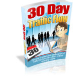 30 Day Traffic Flow Review