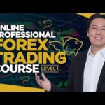 Professional Forex Trading Course Lesson 1